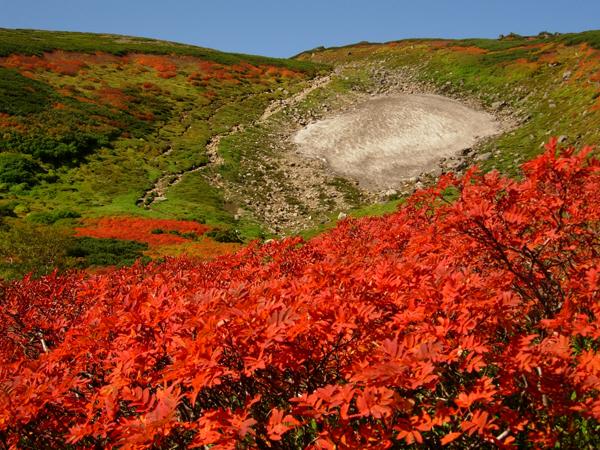 北海道大雪山からの紅葉だより